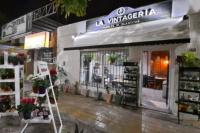 """Inauguró """"La Vintageria"""" un nuevo espacio de muebles y plantas en San Juan"""
