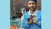Es veterinario y se especializa para mejorar la atención en animales
