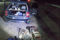 Sorprendieron a un grupo de hombres traficando aves en Bermejo