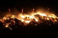 Cuatro caballos muertos y cien fardos de pasto quemados en un incendio rural
