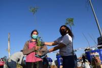 Más de 600 vecinos de Rivadavia cambiaron residuos por árboles